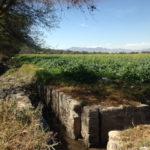 Un canal de regadío lleva aguas no tratadas a los campos del Valle de Mezquital.