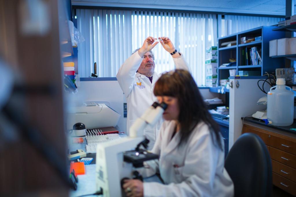 María Castro y Pedro Lowenstein están casados y tienen su propio laboratorio para estudiar los tumores cerebrales en la U-M.