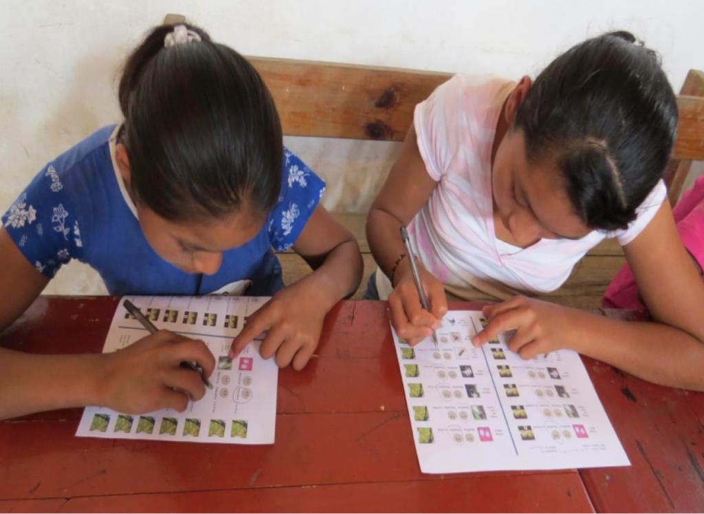 Dos jóvenes agricultoras de café toman una prueba de las interacciones entre los organismos involucrados en la red ecológica de las hormigas aztecas.