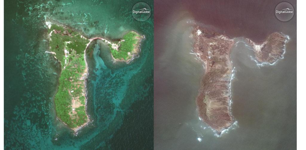 Fotos aéreas de Cayo Santiago antes y después del huracán María. Crédito de foto: Noah Snyder Mackler, Universidad de Michigan