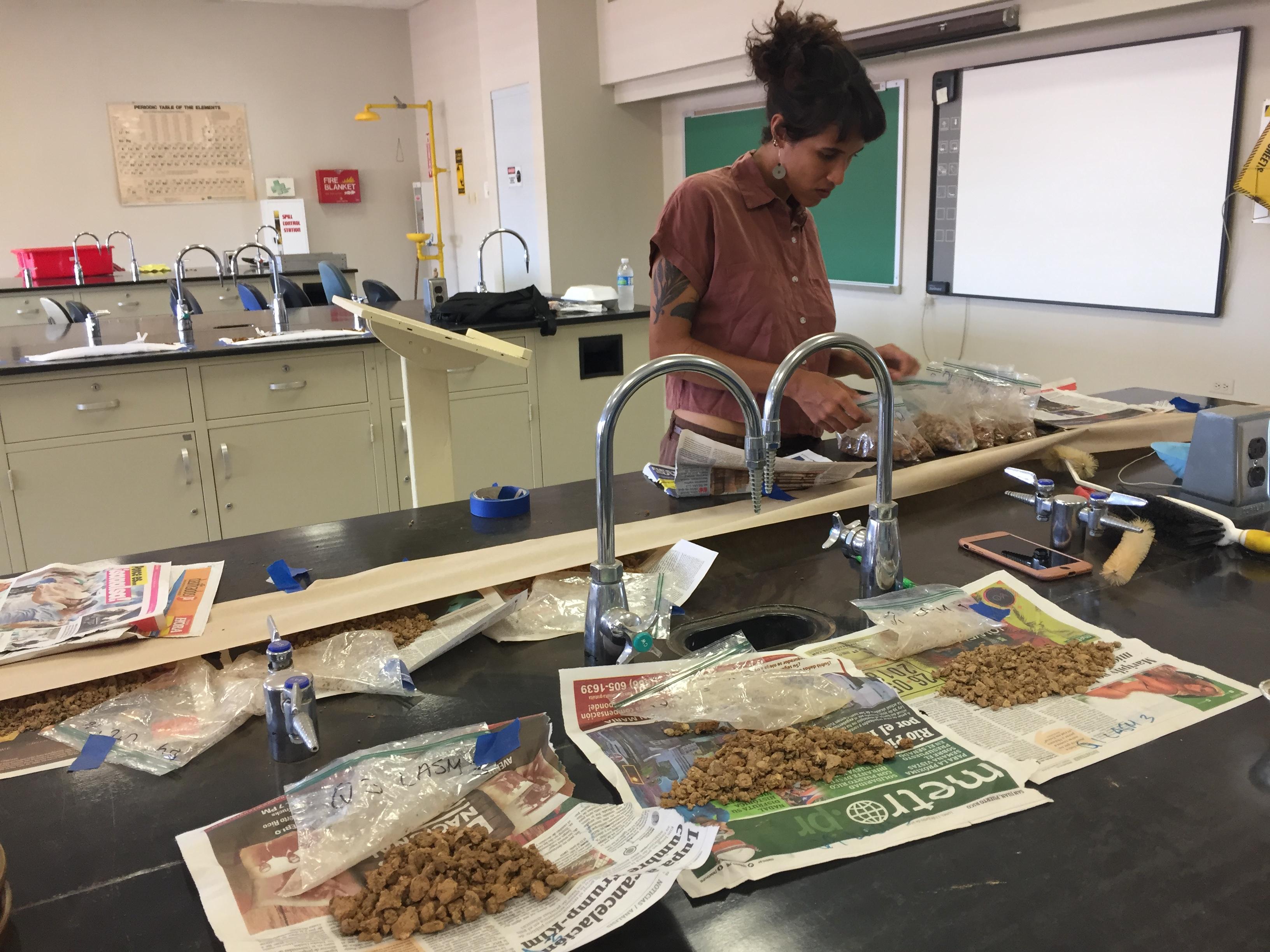Karina Rodríguez, una estudiante de agricultura sostenible de la Universidad de Puerto Rico, Utuado, prepara muestras de suelo para su análisis. El suelo fue recolectado de una de las fincas de café que los profesores de U-M Ivette Perfecto y John Vandermeer están estudiando en la isla.