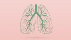 Ilustración de pulmones. Crédito: Michigan Medicine.